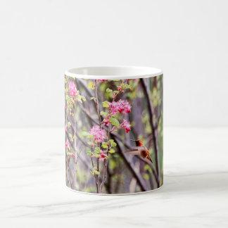 Colibrí y flores rosadas taza