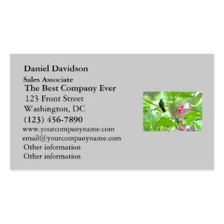 Colibrí y flores tropicales plantilla de tarjeta de visita