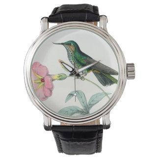 Colibrí y reloj de las flores