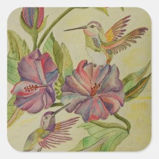 Colibríes e hibisco de la pintura de la acuarela pegatina cuadrada