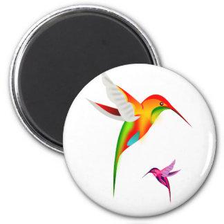 Colibríes hermosos, Colibri Imán Redondo 5 Cm