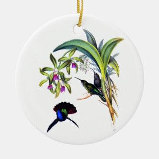 Colibríes hermosos y orquídeas púrpuras adornos