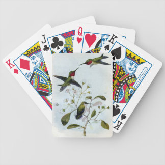 colibríes Rubí-throated Baraja Cartas De Poker