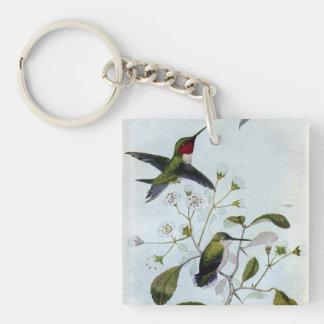 colibríes Rubí-throated Llavero Cuadrado Acrílico A Una Cara
