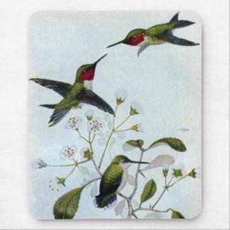 colibríes Rubí-throated Tapetes De Ratón