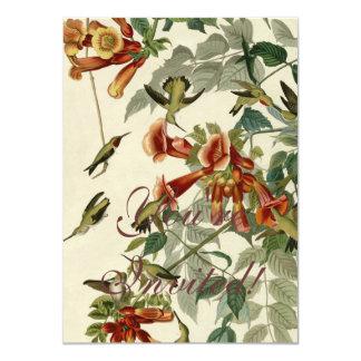 """Colibríes Throated de rubíes de Audubon Invitación 4.5"""" X 6.25"""""""