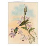 Colibríes y orquídeas de Gould Tarjeta