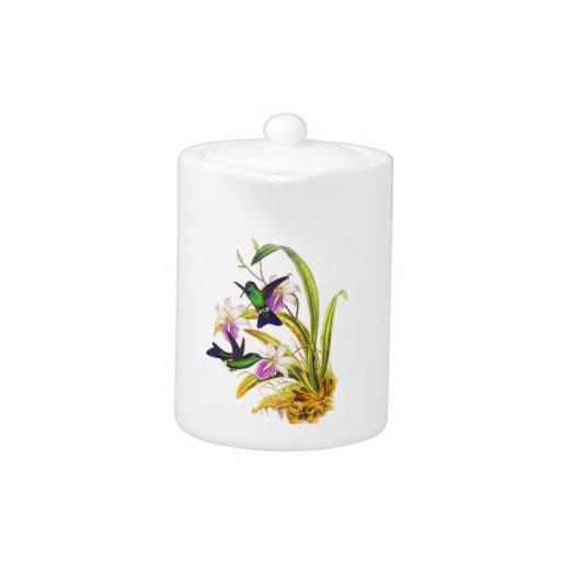 Colibríes y orquídeas púrpuras
