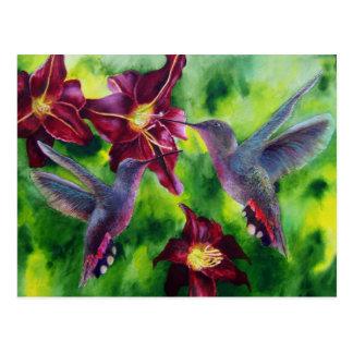 Colibríes y postal de Lillies