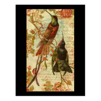 Colibríes y rosas tarjeta postal