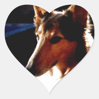 colie calm  dog heart sticker