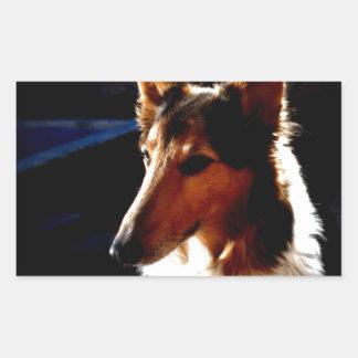 colie calm  dog rectangular sticker