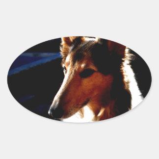 colie calm  dog oval sticker