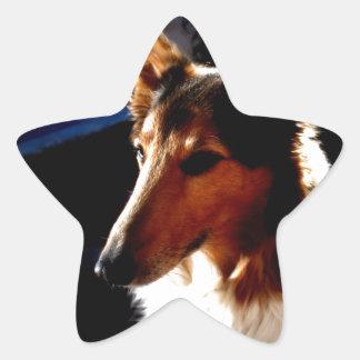 colie calm  dog star sticker
