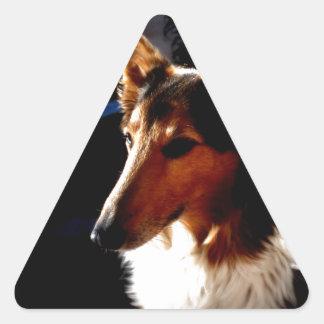 colie calm  dog triangle sticker