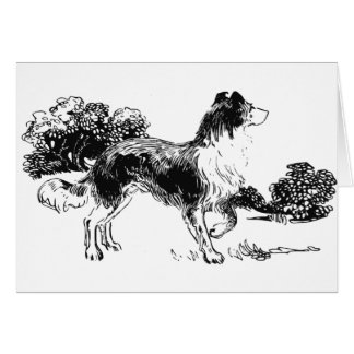 Colie Dog Card