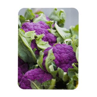 Coliflor púrpura iman de vinilo
