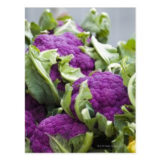 Coliflor púrpura postales
