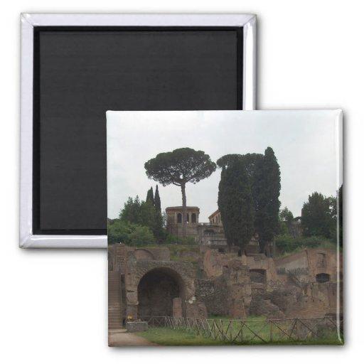 Colina de Palatine en Roma, Italia Imán De Frigorifico