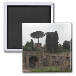 Colina de Palatine en Roma, Italia Imán Cuadrado