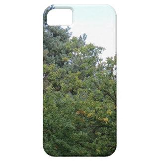 Colinas de Hednesford iPhone 5 Protectores