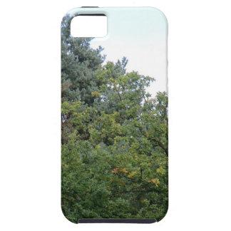 Colinas de Hednesford iPhone 5 Carcasas