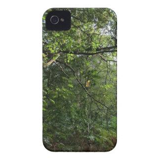 Colinas de Hednesford, Staffordshire Case-Mate iPhone 4 Cárcasa