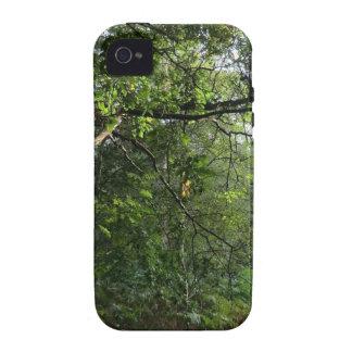 Colinas de Hednesford, Staffordshire iPhone 4/4S Carcasas