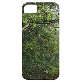 Colinas de Hednesford, Staffordshire iPhone 5 Case-Mate Carcasa