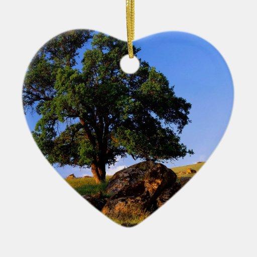 Colinas de Sierra Nevada de los árboles Adorno De Cerámica En Forma De Corazón