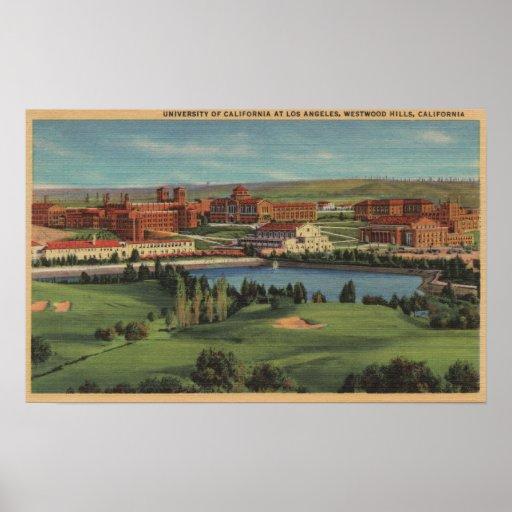 Colinas de Westwood, CA - vista del campus de U.C. Impresiones