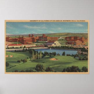 Colinas de Westwood, CA - vista del campus de U.C. Póster