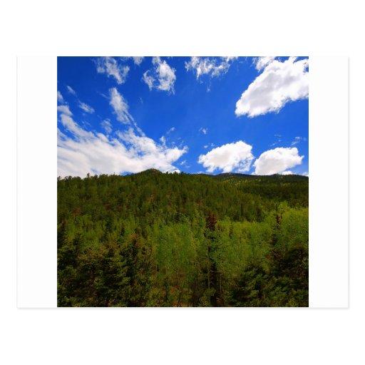 Colinas del árbol del azul de cielo de la tarjetas postales