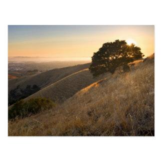 Colinas del este de la bahía de California en post Tarjeta Postal