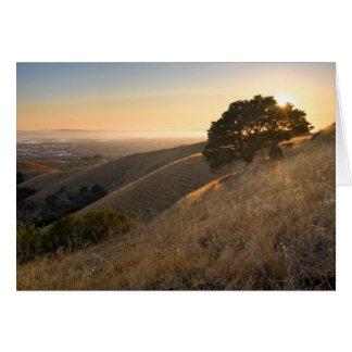 Colinas del este de la bahía de California en tarj Tarjeta De Felicitación