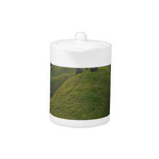 Colinas del prado del camino de la naturaleza