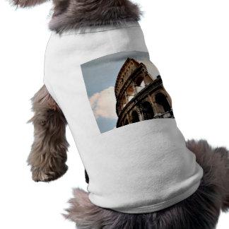 Coliseo romano prenda mascota