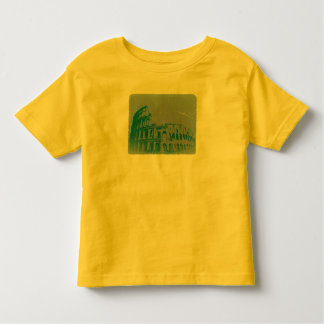 Coliseum in Rome Tee Shirts