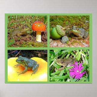 """Collage 16"""" de la foto de las ranas de leopardo de póster"""