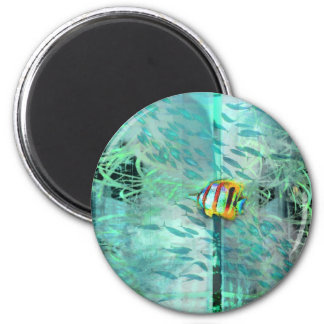 Collage angel fish swims in a school of blue fish 2 inch round magnet