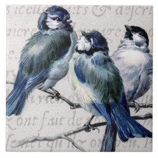 Collage azul de los pájaros del vintage - Bluebird Azulejo Cerámica