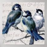 Collage azul de los pájaros del vintage - Bluebird Poster