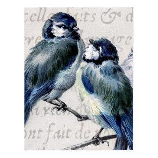 Collage azul de los pájaros del vintage - Bluebird Tarjeta Postal
