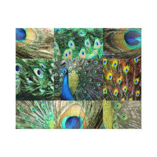Collage azulverde de la foto del pavo real impresión en lona