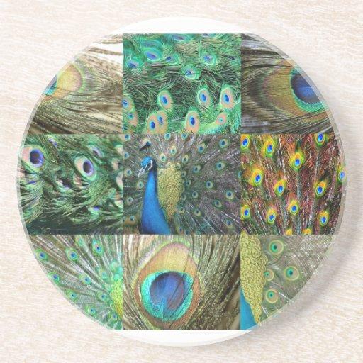 Collage azulverde de la foto del pavo real posavasos diseño