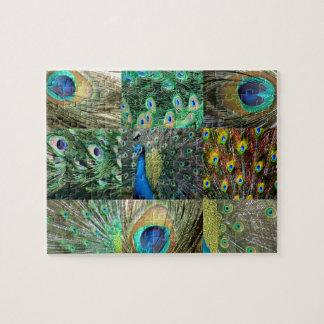 Collage azulverde de la foto del pavo real rompecabezas