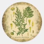 Collage botánico del ajenjo etiqueta redonda