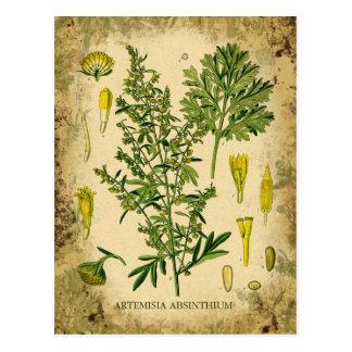 Collage botánico del ajenjo postal