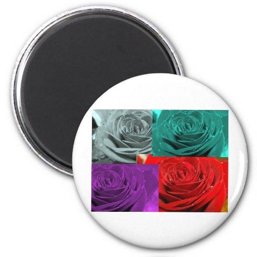 Collage color de rosa imán redondo 5 cm
