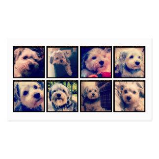 Collage de encargo de la foto con las fotos cuadra tarjetas de visita